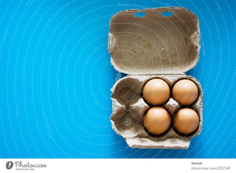 Karolas Eier Lebensmittel Hühnerei Ernährung Bioprodukte Eierkarton Karton Verpackung Tischplatte frisch Glück gut lecker blau braun Appetit & Hunger Natur 4