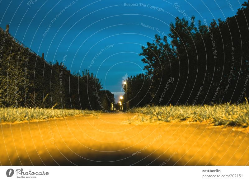 Brandenburgweg Wege & Pfade Fußweg Abend Hecke Garten Schrebergarten Kleingartenkolonie Nacht Langzeitbelichtung Himmel Gras Rasen Wiese Froschperspektive