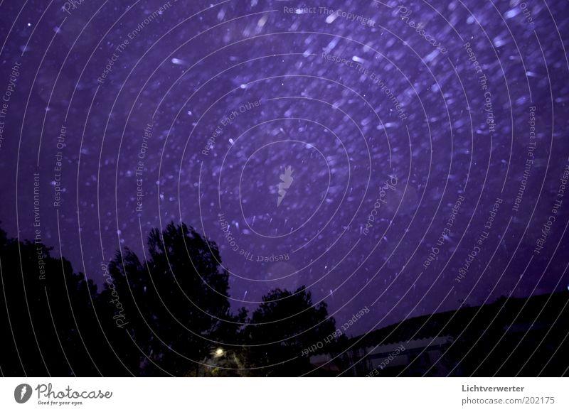 Regen in der Nacht Urelemente Wasser Wassertropfen Himmel Nachthimmel schlechtes Wetter Unwetter Wind Sturm violett schwarz Gedeckte Farben Außenaufnahme