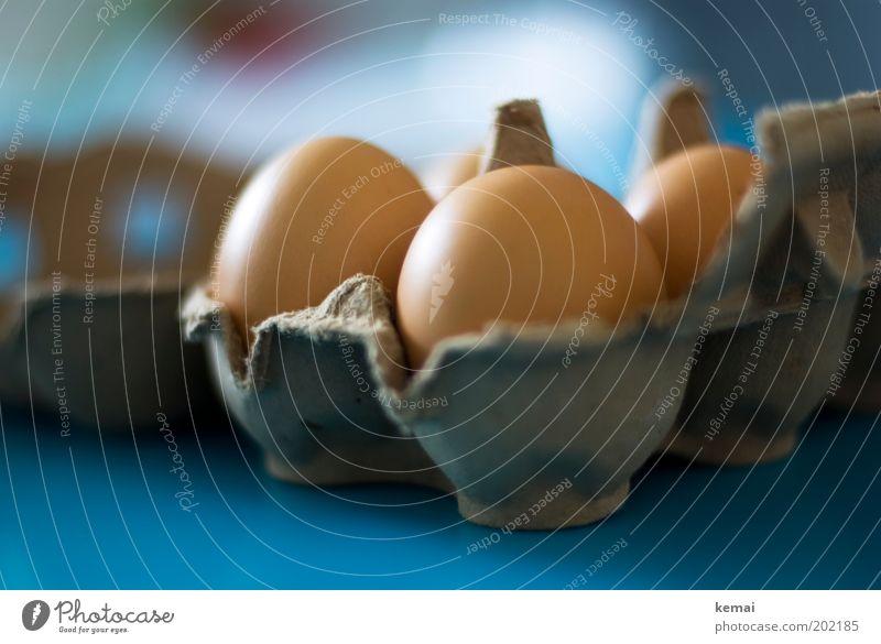Karolas Eier (II) blau braun Lebensmittel frisch authentisch Ernährung Tisch gut Ei Bioprodukte Abendessen Büffet Brunch Tischplatte Unschärfe Möbel