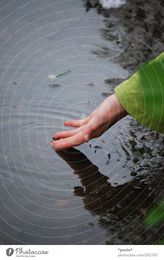 Flussmomente Mensch Natur Wasser Hand grün ruhig Erholung Bewegung Traurigkeit träumen See braun Erde nass natürlich frei