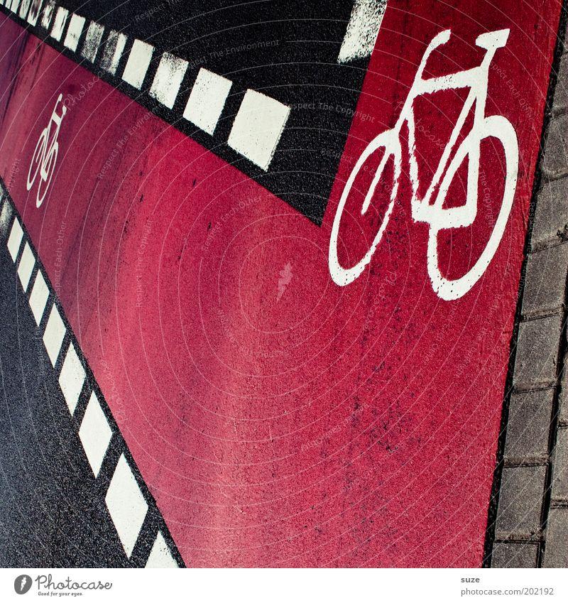 Citybike Fahrrad Stadt Verkehr Straßenverkehr Zeichen Schriftzeichen Schilder & Markierungen Verkehrszeichen Linie Streifen rosa schwarz Fahrradweg Asphalt