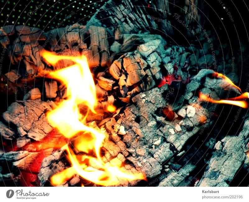 prometheus. Sommer Garten Kamin Feierabend Natur Wärme Grill Holz heiß Warmherzigkeit Bewegung Kraft Feuer Flamme Glut Brandasche Kaminfeuer brennen Farbfoto