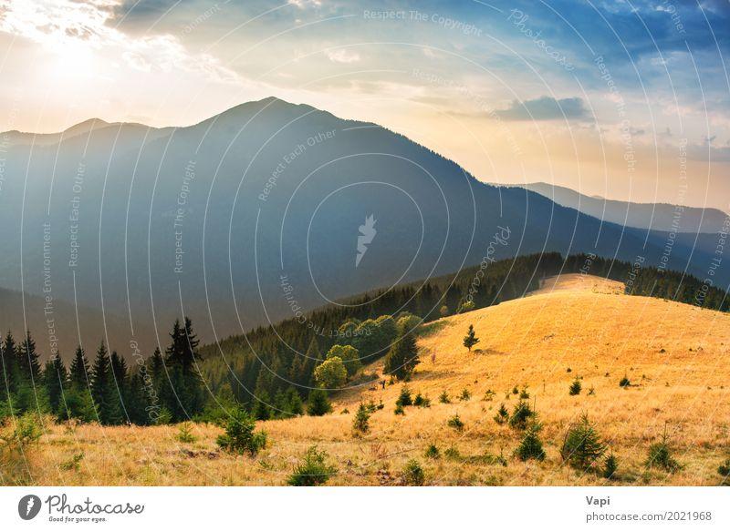 Himmel Natur Ferien & Urlaub & Reisen Himmel (Jenseits) blau Sommer Farbe grün weiß Sonne Baum Landschaft Wolken Ferne Wald Berge u. Gebirge
