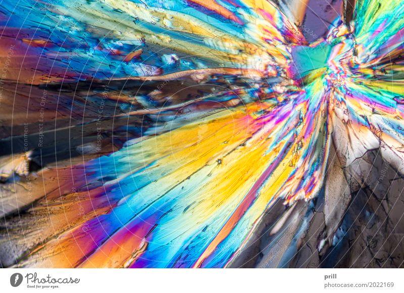 liqueur micro crystals Natur gelb Beleuchtung Wissenschaften Flüssigkeit Kristallstrukturen künstlich Mineralien Lichtbrechung vergrößert Naturwissenschaft