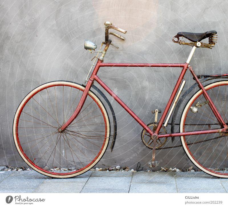 Mein geliebtes rotes Fahrrad alt weiß Sommer rot schwarz Wand Mauer Freiheit grau Stil Freizeit & Hobby elegant Fahrrad stehen Ausflug ästhetisch