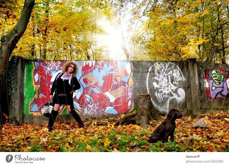 Crazy Girl goes Gassi Frau Dame Bekleidung Tasche Stiefel Hund Welpe Gassi gehen Spaziergang Wald Baum Mauer malen Malwerk Graffiti Kunst Sonne Herbst Haushund