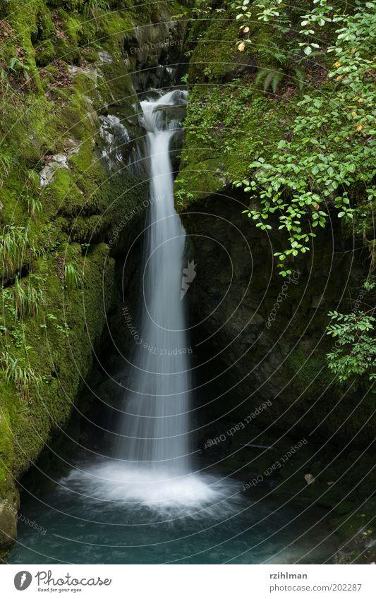 Kleiner Wasserfall Wasser grün blau ruhig Erholung klein nass Felsen frisch Freizeit & Hobby Moos Wasserfall fließen Erfrischung Quelle Felsspalten