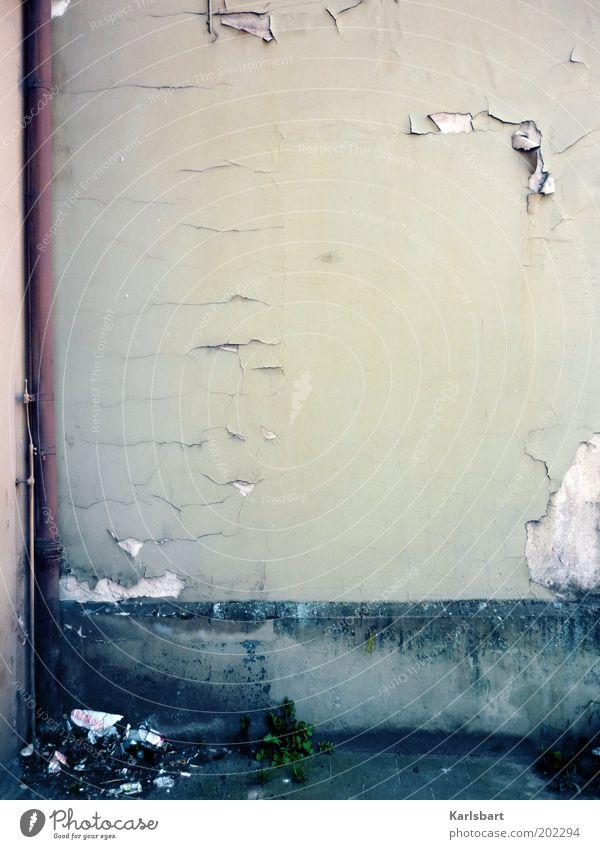 eastwood. Bauwerk Gebäude Architektur Mauer Wand Fassade Vergänglichkeit Wandel & Veränderung Putz verfallen Hintergrund neutral abblättern Verfall Riss Ecke