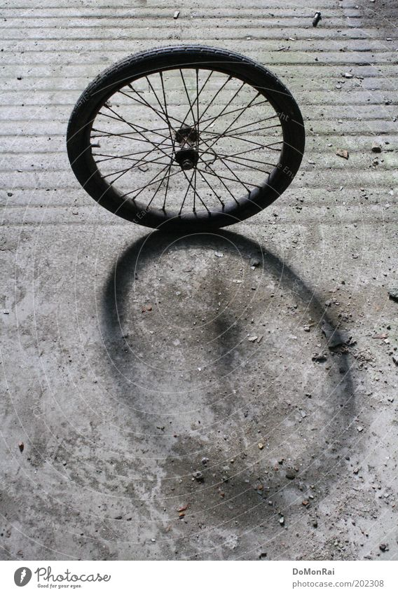Radstand Radsport Fahrrad Linie Streifen drehen stehen rund grau schwarz Bewegung Hoffnung Leichtigkeit stagnierend Speichen Nabe Kreis Oval Schatten Betonboden