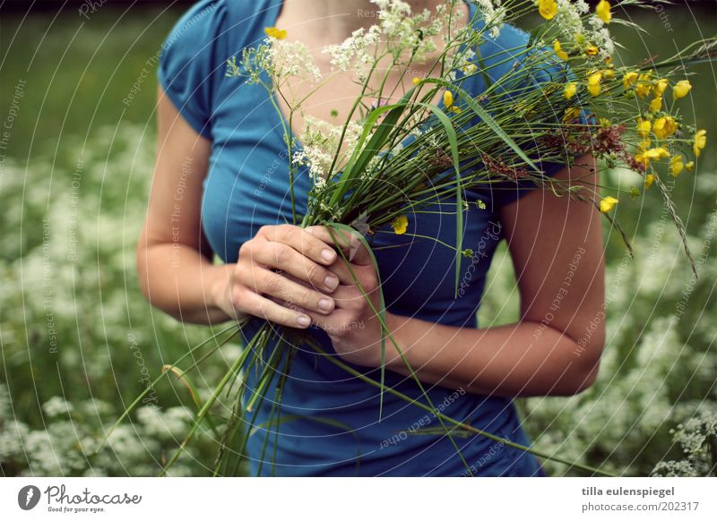 Für Dich! Leben Wohlgefühl Ausflug Sommer Sommerurlaub feminin Junge Frau Jugendliche 1 Mensch Umwelt Natur Pflanze Blume Gras Wiese Blumenstrauß Freundlichkeit