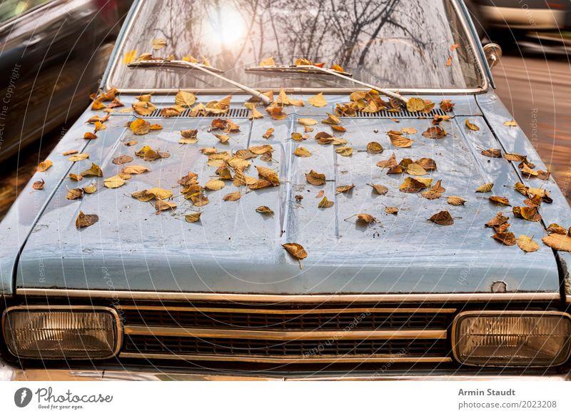 Herbstauto Lifestyle Stil Design Ausflug Abenteuer Umwelt Sonne Sonnenlicht alt authentisch retro blau Stimmung Armut Güterverkehr & Logistik Verfall