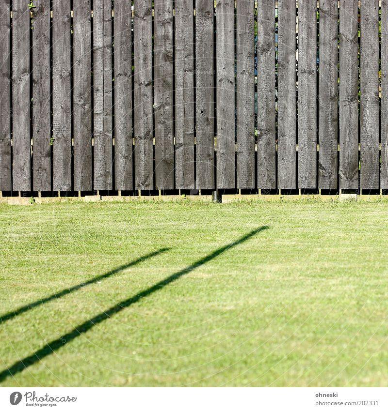Gartenzaun Pflanze Gras Wiese Zaun Bretterzaun grün Farbfoto abstrakt Muster Strukturen & Formen Tag Licht Schatten Kontrast Sonnenlicht Zentralperspektive