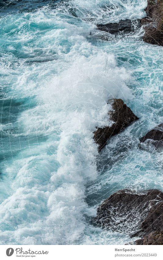 Splash Natur schön weiß Landschaft Meer Umwelt natürlich Küste wild Wellen bedrohlich Urelemente stark türkis Brandung maritim