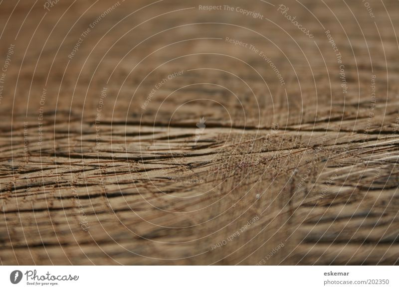 Holz alt Holz Linie braun natürlich authentisch Streifen Vergänglichkeit Netz Spuren Furche eckig Erfahrung abstrakt Muster Kerben
