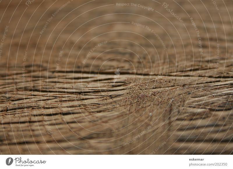 Holz Linie Streifen Netz alt authentisch eckig natürlich braun Erfahrung Vergänglichkeit Furche Kerben Strukturen & Formen Muster Spuren Farbfoto Außenaufnahme