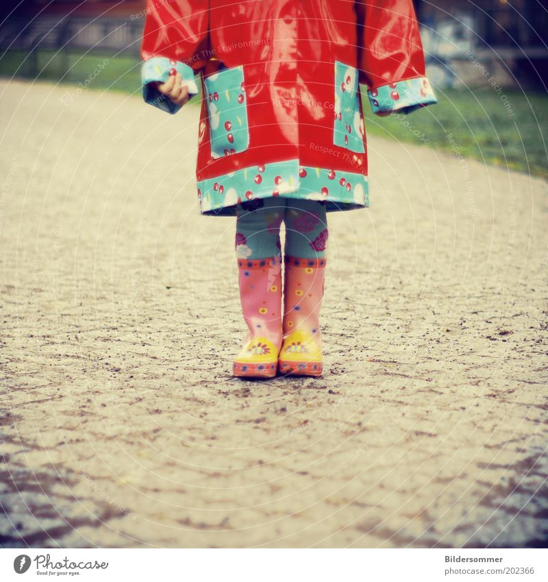R A I N Y Kind Mensch Kleinkind Kindheit 1 1-3 Jahre Herbst schlechtes Wetter Regen Wege & Pfade Regenjacke Gummistiefel frieren trendy lustig nass blau rosa