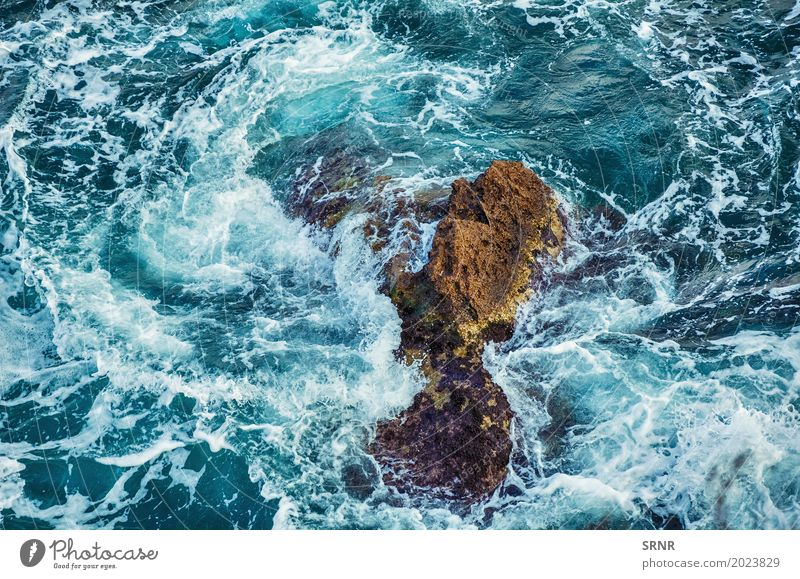 Rock in der Küste Meer Umwelt Natur Wasser Felsen maritim Schwarzes Meer Schalter Klippe steil abfallend Küstenstreifen Felsspitze ökologisch Ökosystem