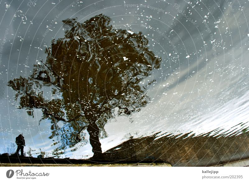 drip drop Angeln 1 Mensch Umwelt Natur Landschaft Pflanze Baum Wellen Küste Seeufer Flussufer Nordsee Ostsee Meer Teich Bach Stimmung Reflexion & Spiegelung