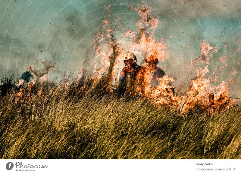 Deichbrand #3 Meer dunkel Luft Kraft Brand Kraft Feuer gefährlich bedrohlich gruselig Rauch Stress Stranddüne kämpfen Nordsee Feuerwehrmann