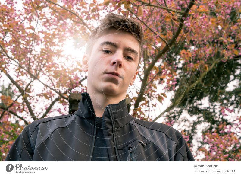 Porträt unter Baum Mensch Natur Jugendliche Pflanze schön Junger Mann Landschaft ruhig Leben Lifestyle Frühling Stil Glück Garten Stimmung