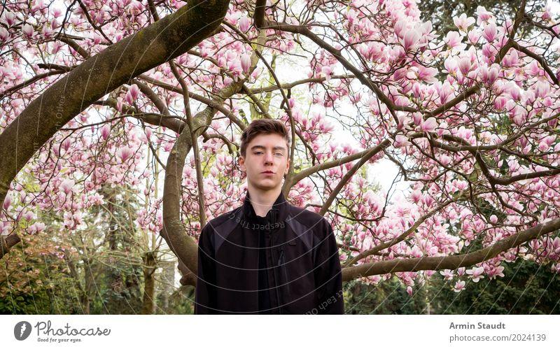 Porträt unter Magnolie Mensch Natur Jugendliche Pflanze schön Junger Mann Baum Landschaft ruhig Leben Lifestyle Frühling Stil Glück Garten Stimmung