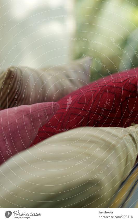 Kissen Reichtum Sofa Sessel ästhetisch mehrfarbig grau rot Häusliches Leben Farbfoto Nahaufnahme Menschenleer Textfreiraum oben Tag Unschärfe