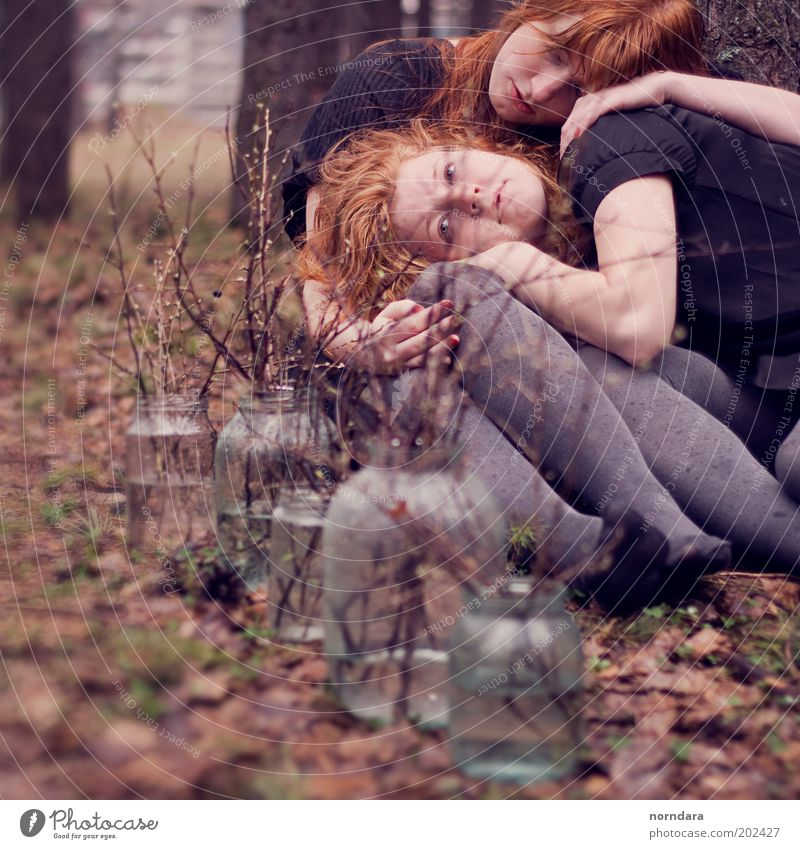 Mensch Jugendliche schön Baum Pflanze Gesicht Wald Erwachsene Herbst Gras Haare & Frisuren Familie & Verwandtschaft Freundschaft Glas Haut Behaarung