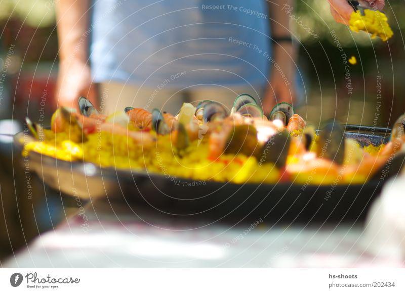 Hunger Paella mit Meeresfrüchten Fisch Ernährung Mittagessen Büffet Brunch Spanien Reis Muschel Pfanne Sommer Sommerurlaub gelb Farbfoto Außenaufnahme Tag