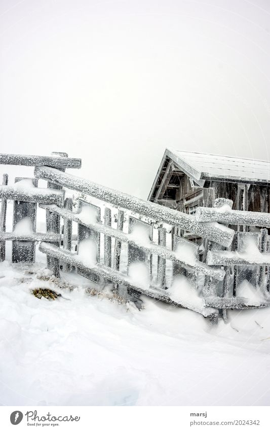 Winterzauber nach dem Sturm schlechtes Wetter Eis Frost Schnee Hütte Holzzaun kalt gefroren Zaun Gedeckte Farben Außenaufnahme Muster Menschenleer