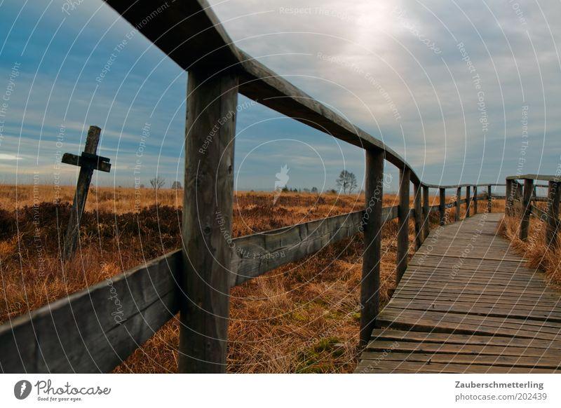 The Cross Natur Himmel ruhig Einsamkeit Ferne Tod Gras Wege & Pfade Landschaft Religion & Glaube Wetter Horizont Hoffnung ästhetisch Sträucher Ziel