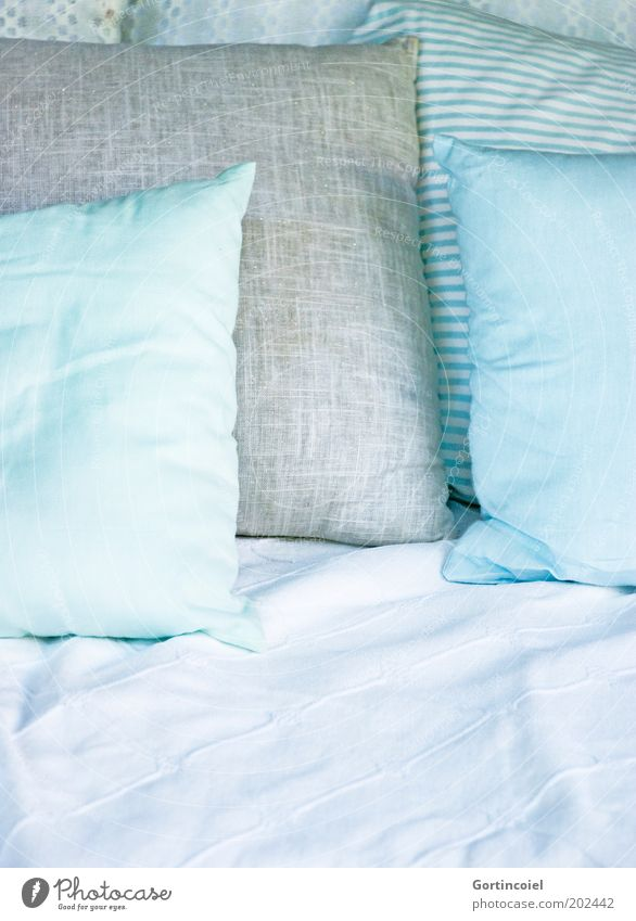 Relax Lifestyle Stil Design Wellness Erholung Häusliches Leben Innenarchitektur Dekoration & Verzierung Sofa Sessel Bett hell weich gemütlich bequem Kissen
