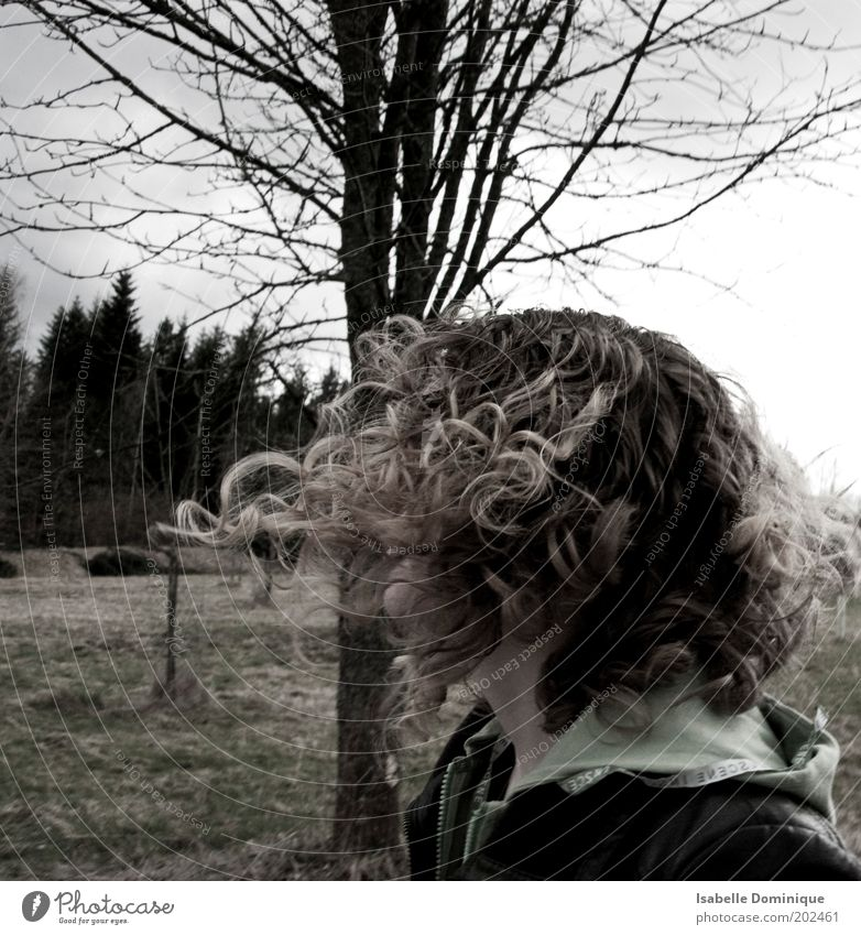 schwungvoll Mensch Natur Jugendliche Baum Landschaft feminin Bewegung Gras Freiheit Haare & Frisuren Kopf Junge Frau blond Wind Feld wandern
