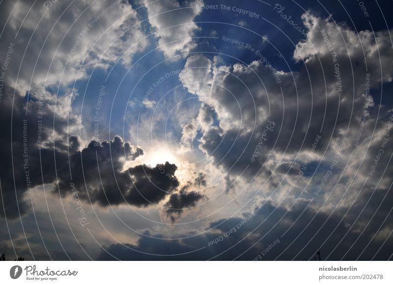 Und all die wirren Gedanken... Ferne Freiheit Sommer Sonne Sonnenbad Luftverkehr Umwelt Natur Urelemente Himmel nur Himmel Wolken Sonnenlicht Klimawandel Wetter