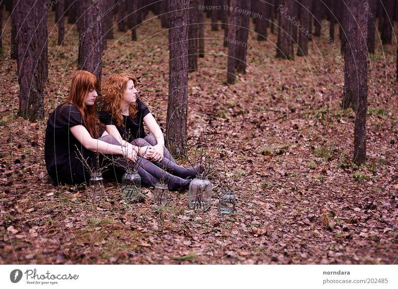 schön Baum Wald Herbst Traurigkeit Regen Stimmung Familie & Verwandtschaft Kleid Ast Russland Strumpfhose Nostalgie Geschwister Locken langhaarig