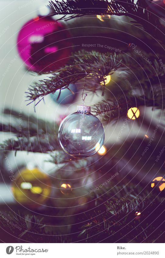 Weihnachten naht. Weihnachten & Advent Winter Baum Tanne Weihnachtsbaum Geborgenheit Kugel Schmuck Dekoration & Verzierung Licht Stimmung Wohnzimmer