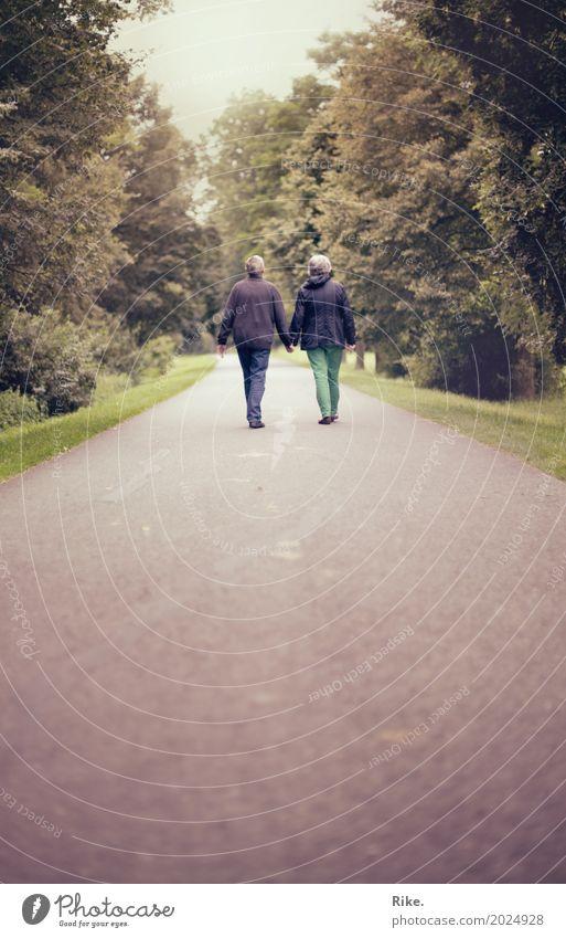 Gemeinsamer Lebensweg. Mensch Frau Erwachsene Mann Weiblicher Senior Männlicher Senior Eltern Großeltern Familie & Verwandtschaft Paar Partner 2 Park gehen