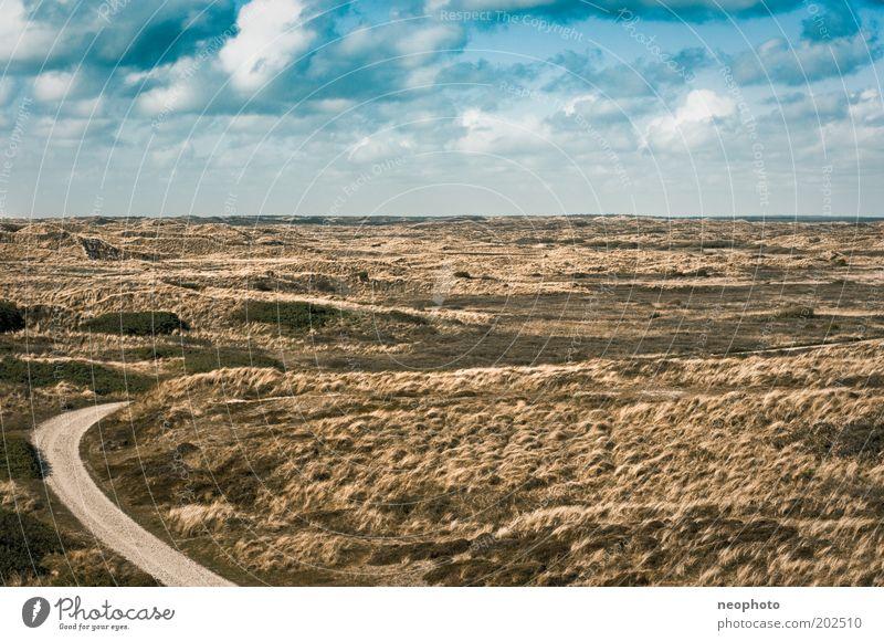 Die Straße ins Nichts aka der Weg zum Glück Himmel grün blau Wolken gelb Straße Gras Freiheit Wege & Pfade Landschaft Küste Erde Unendlichkeit Sehnsucht außergewöhnlich Nordsee