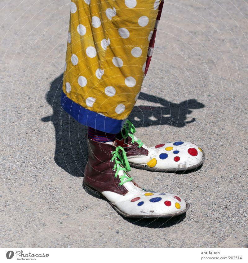 Bunter Quadratlatscher Freude Entertainment Clown maskulin Mann Erwachsene Beine 1 Mensch Zirkus Bekleidung Hose Stoff Latzhose Schuhe lustig verrückt blau