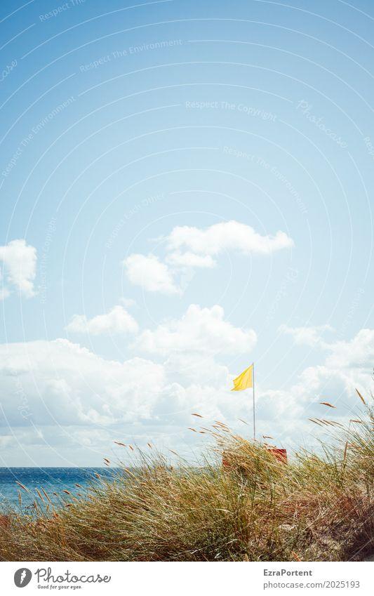 ` Wellness Erholung Ferien & Urlaub & Reisen Tourismus Ausflug Sommer Sonne Strand Meer Umwelt Natur Landschaft Himmel Wolken Wetter Schönes Wetter Gras Ostsee
