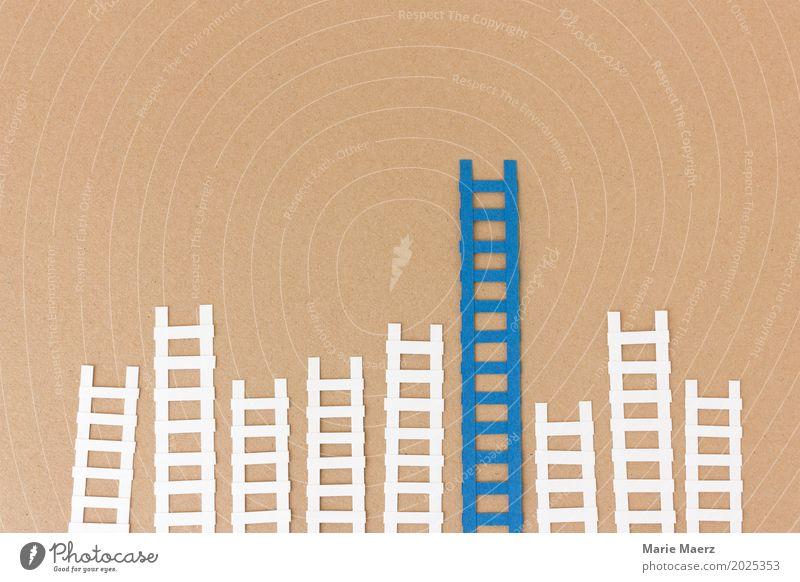 Hoch hinaus Business braun Arbeit & Erwerbstätigkeit Wachstum Erfolg Grafik u. Illustration Symbole & Metaphern Beruf Karriere Leiter anstrengen Verschiedenheit