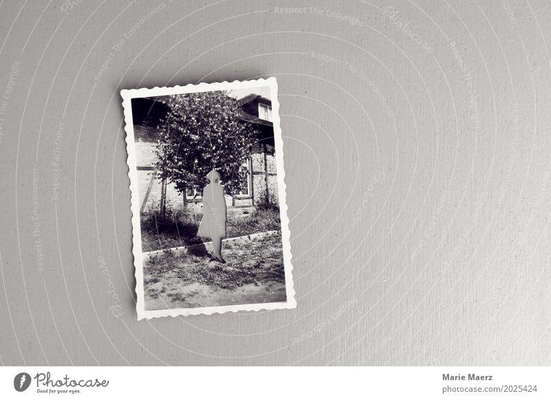Erinnerungen Frau Erwachsene Foto entdecken Blick alt grau Traurigkeit Trauer Sehnsucht Einsamkeit Nostalgie träumen Vergangenheit Vergänglichkeit früher