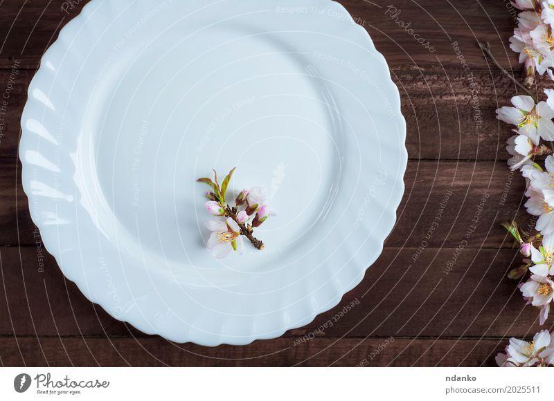 leere Platte mit einem Zweig der blühenden Mandel Mittagessen Abendessen Teller Besteck Tisch Küche Restaurant Blume Holz alt oben retro braun weiß Speise