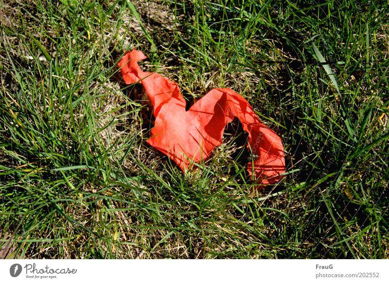The party is over Dekoration & Verzierung Gras grün rot Farbfoto Außenaufnahme Tag