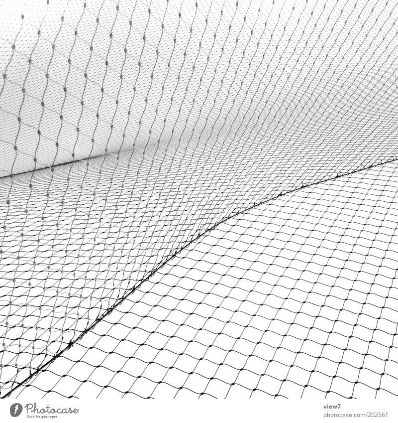 Netzwerk weiß kalt Linie Metall Ordnung ästhetisch Netzwerk authentisch Netz dünn abstrakt rein Streifen außergewöhnlich Barriere