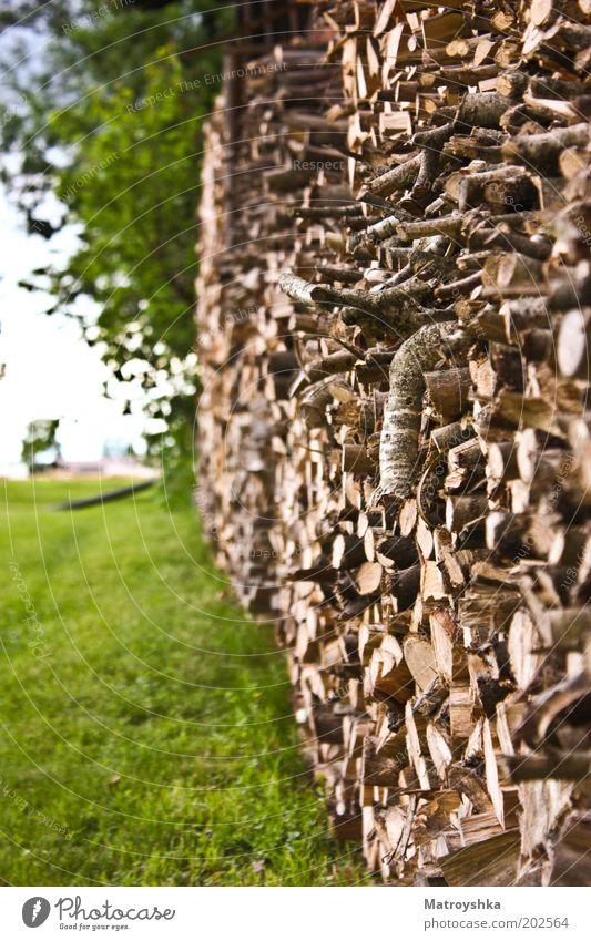 hölzern Natur Holz Holzstapel Brennholz Vorrat viele Stapel Farbfoto Außenaufnahme Tag Kontrast Zentralperspektive Brennstoff Schwache Tiefenschärfe