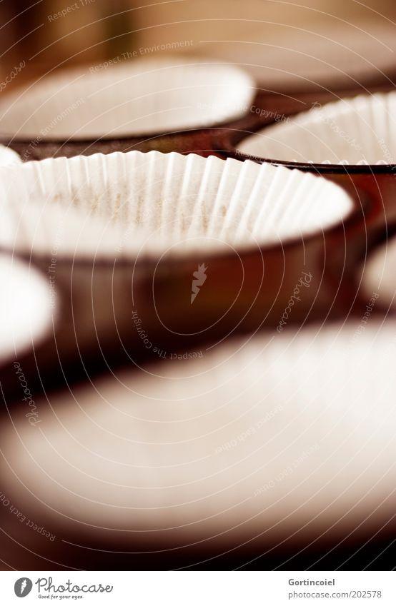 A Lebensmittel Teigwaren Backwaren Dessert Süßwaren Ernährung lecker Muffin Backform Farbfoto Außenaufnahme Schwache Tiefenschärfe Tag backen Nahaufnahme