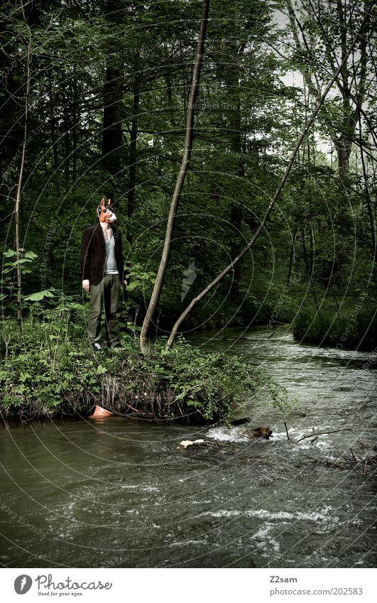 Fremdkörper?! Stil Mensch maskulin Umwelt Natur Landschaft Wald Flussufer Maske Esel stehen träumen dunkel gruselig trashig Einsamkeit verstört seltsam