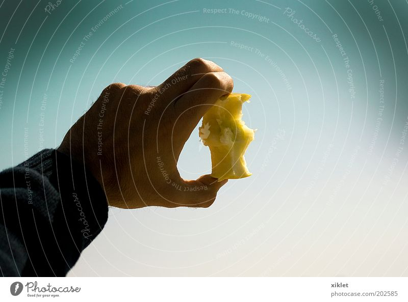 Mann blau Hand grün Sonne Meer Strand Lebensmittel Sand Küste Essen Gesundheit Wellen Frucht Arme Finger