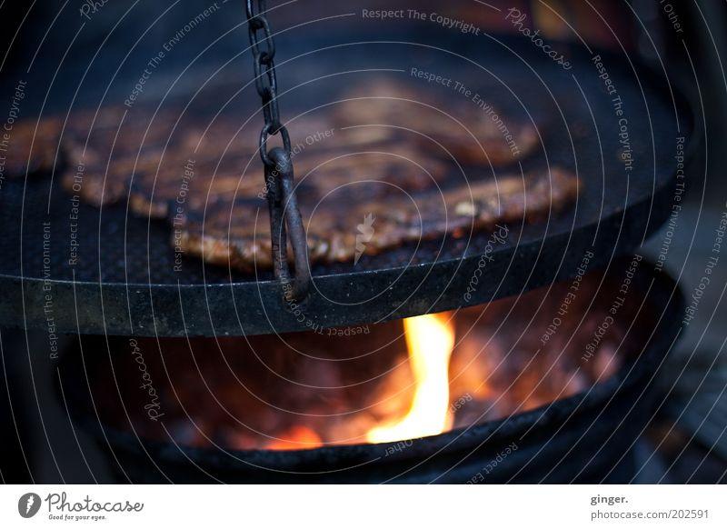 Endlich wieder Grillzeit Lebensmittel Freizeit & Hobby Ernährung Feuer heiß lecker Grillen Fleisch ungesund Glut Grillrost Kohle Grillkohle Grillsaison
